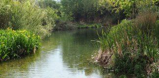 rio palancia en castellon