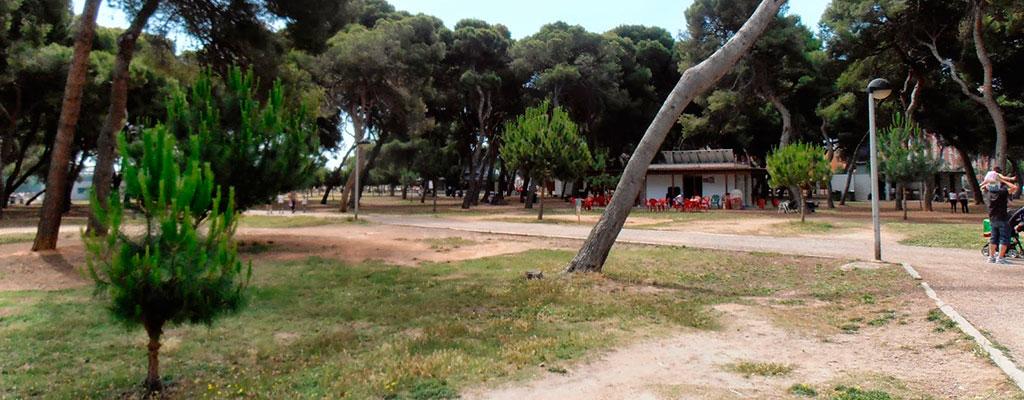 El Parque del Pinar, un rincón verde en el Grao de Castellón