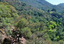 parque nacional sierra de espadan