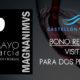Sorteo experiencia: visita Bodega Magnanimvs