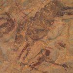 pinturas rupestres de la cueva remigia