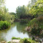 rio palancia castellon