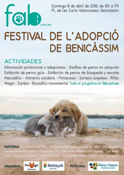 Festival de adopción de Benicàssim 2018