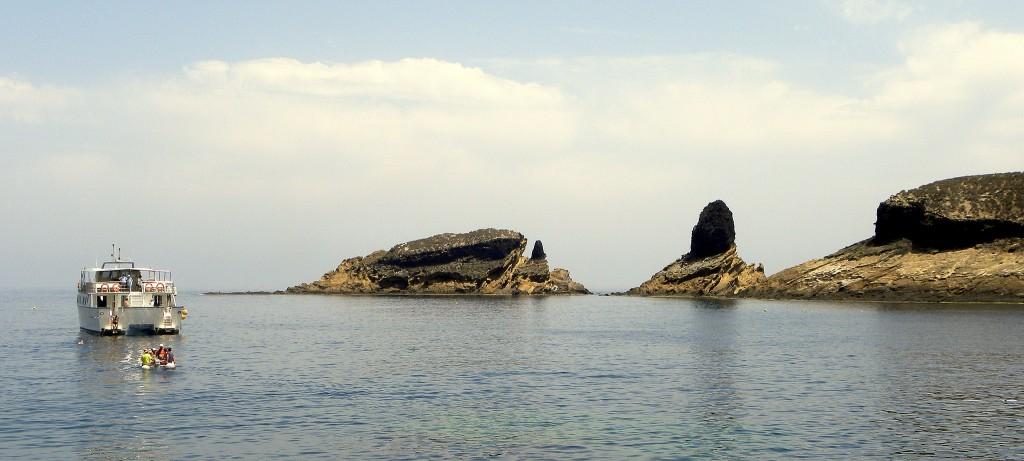 Excursión para buceo en Columbretes desde Castellón y Alcocebre