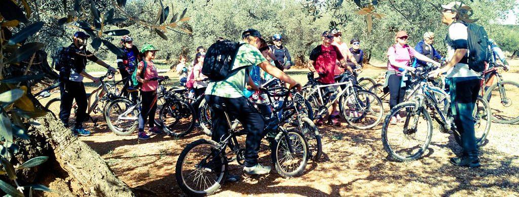 Ruta cicloturística Olivos Milenarios del Maestrazgo