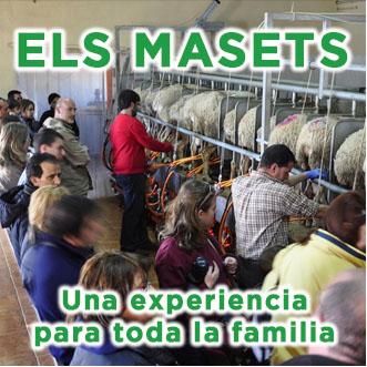 Visita fábrica cuajadas el maset